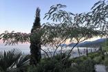 Крым  номер с видом на маре  Семидворье   отдых в Алуште рядом  пляж